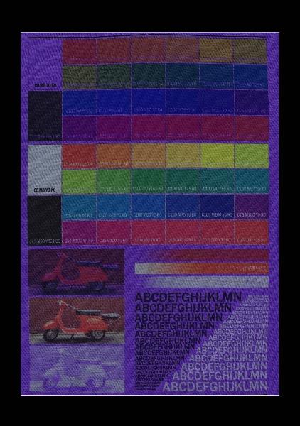 539-violetpurple